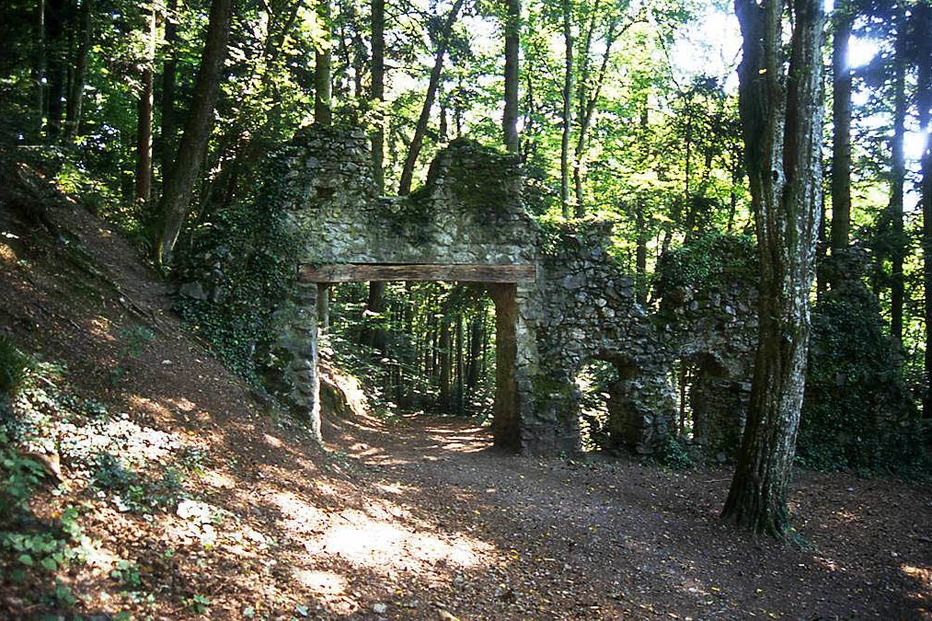 Burg Wiesneck - Buchenbach
