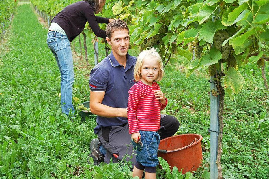 Weingut Rieger (Betberg) - Buggingen