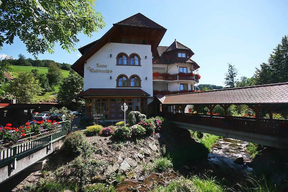 Hotel Ludinm�hle (Brettental) - Freiamt