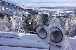 Fotos: Ein Traumtag auf dem Schauinsland im Winter