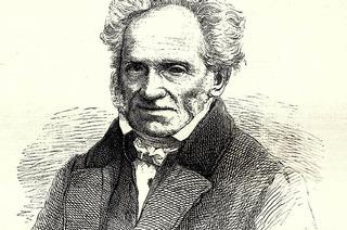 Das Denken Schopenhauers