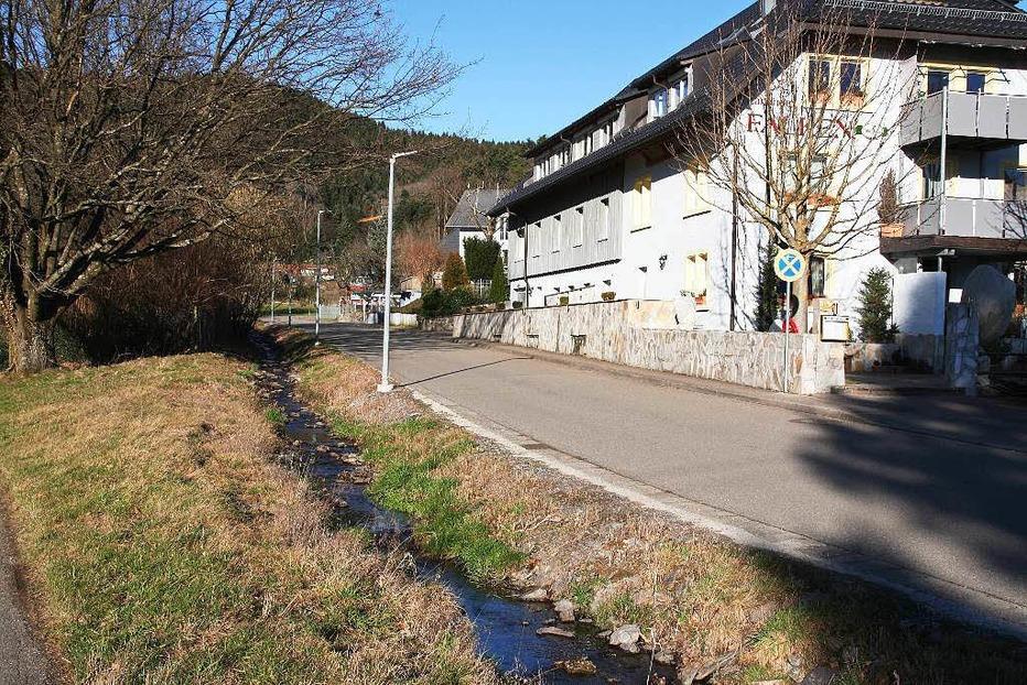Hotel-Landgasthof Falken (Wittental) - Stegen