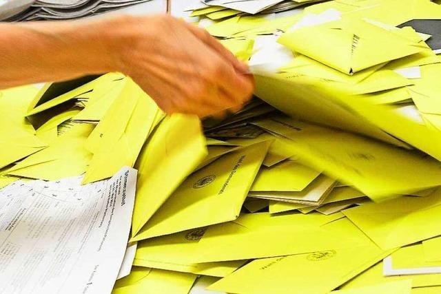 AfD fordert Wahlbeobachter – und löst Empörung aus