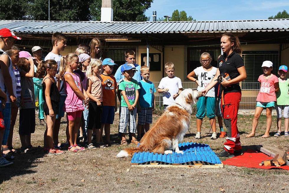 Vereinsheim Verein für Deutsche Schäferhunde - Herbolzheim