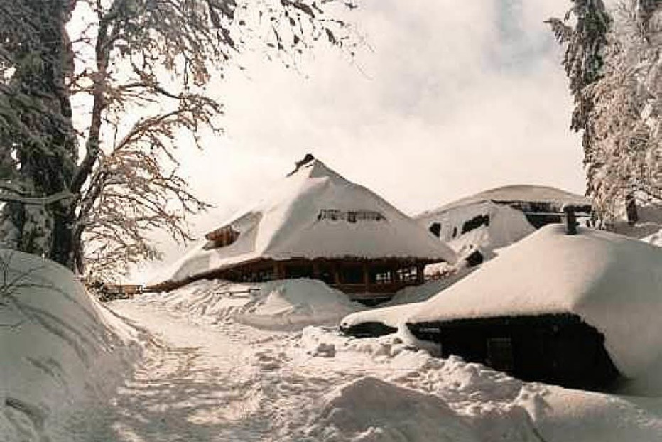 Seebuck-Hütte Oberle - Feldberg