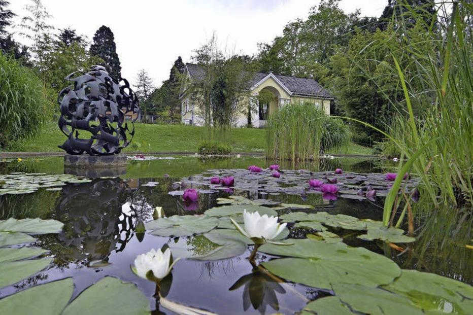 pflanzenwelten im botanischen garten freiburg werden wieder f hrungen angeboten badische. Black Bedroom Furniture Sets. Home Design Ideas