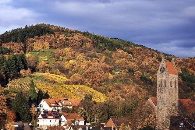 Auf dem Ortenauer Weinpfad von Sasbachwalden nach Bühlertal