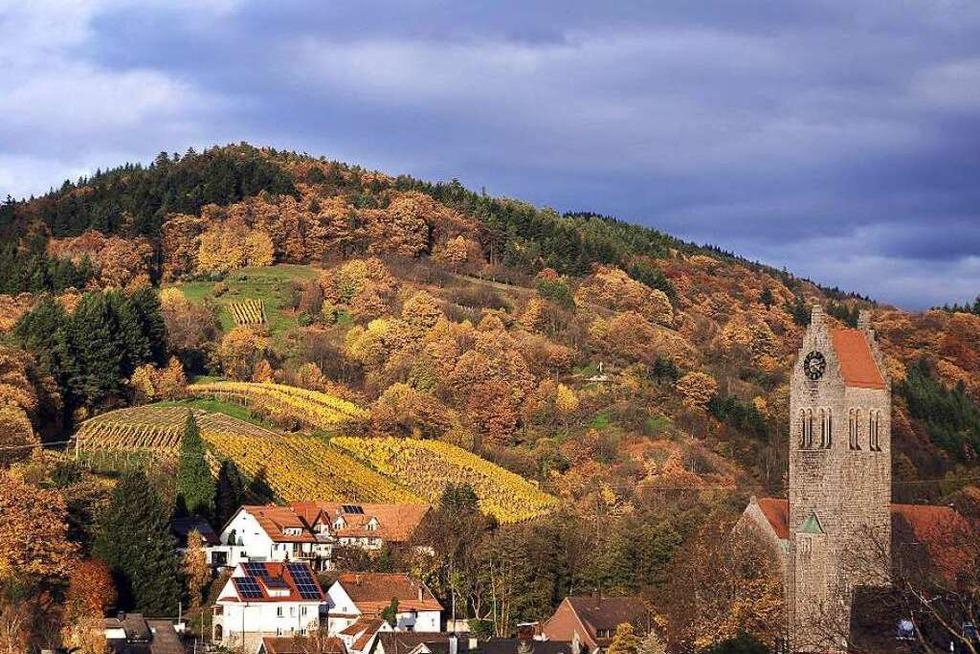 Auf dem Ortenauer Weinpfad von Sasbachwalden nach Bühlertal - Badische Zeitung TICKET