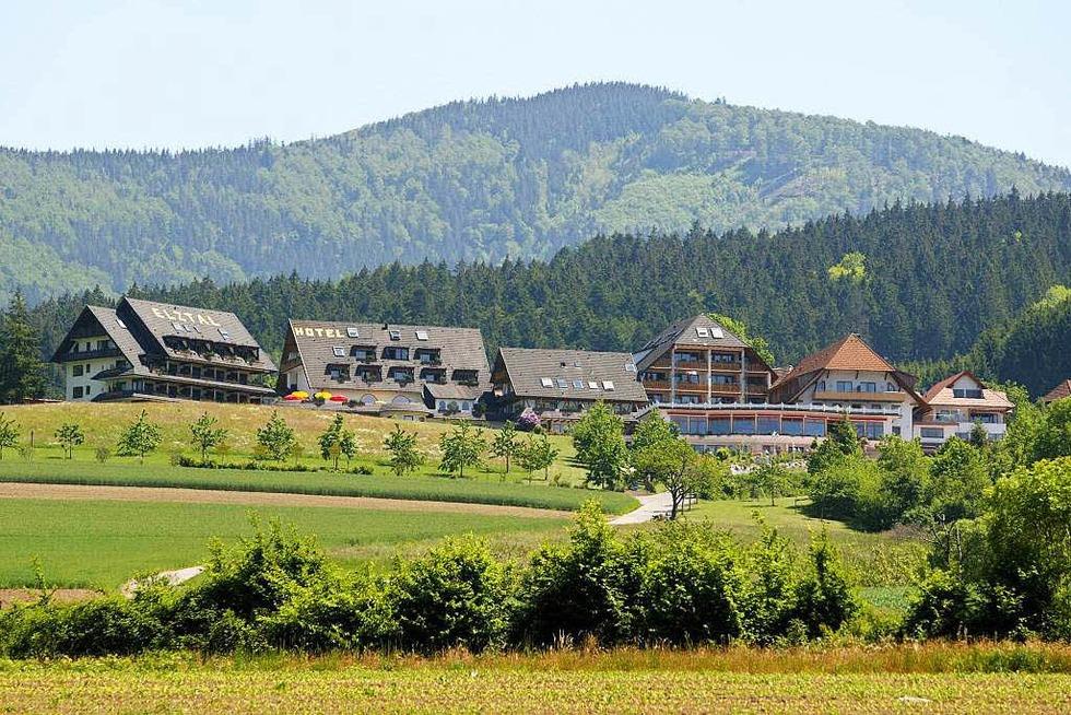 Elztal-Hotel Schwarzbauernhof - Winden