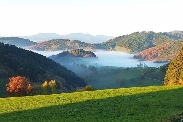 Höhengasthaus Landwassereck (Oberprechtal)