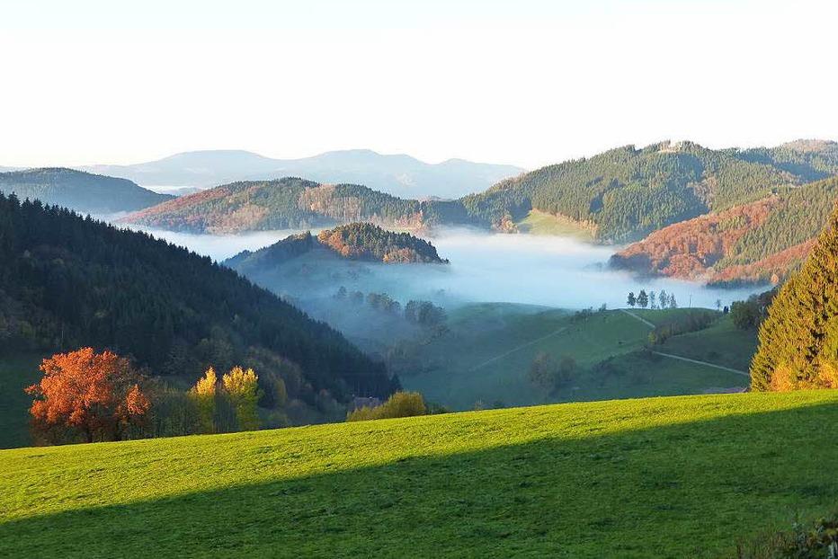 Höhengasthaus Landwassereck (Oberprechtal) - Elzach
