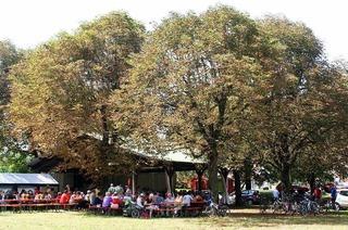 Festplatz unter den Kastanien (Kleinkems)