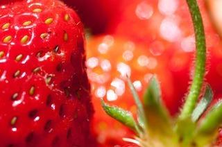 Oberkirch feiert das Erdbeerfest - mit einer Gourmetstra�e