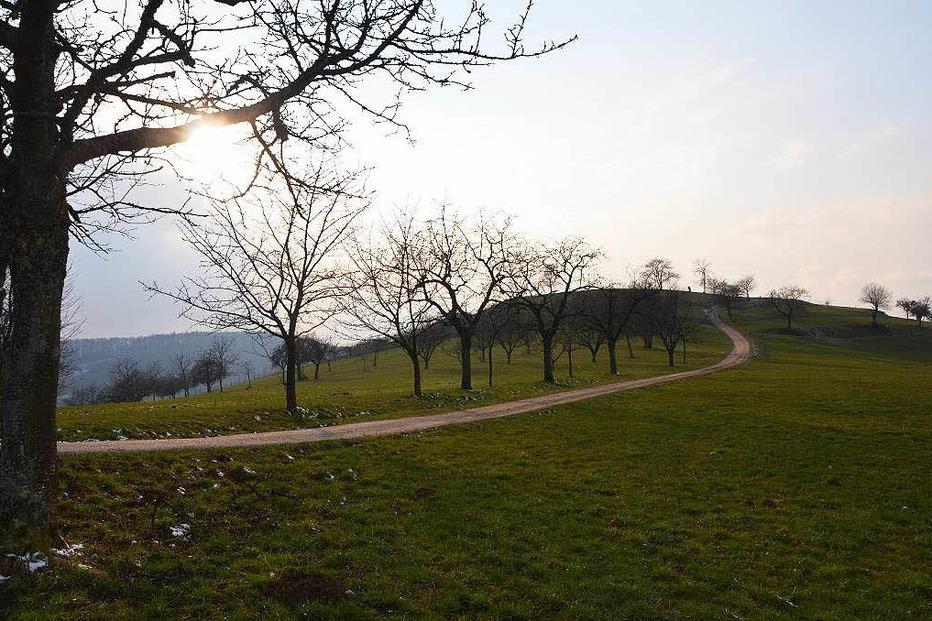Lipberg (Lipburg) - Badenweiler