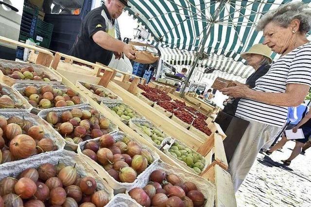 Im Juni sind auf dem Münstermarkt die Beeren los
