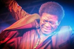 Fotos: Das Konzert von Charles Bradley auf dem ZMF