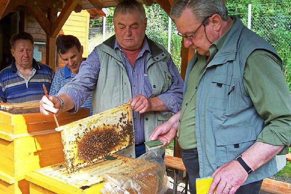Lehrbienenstand - Löffingen