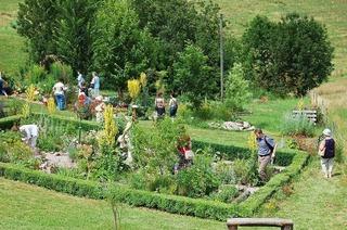 Garten Edith Fehrenbach