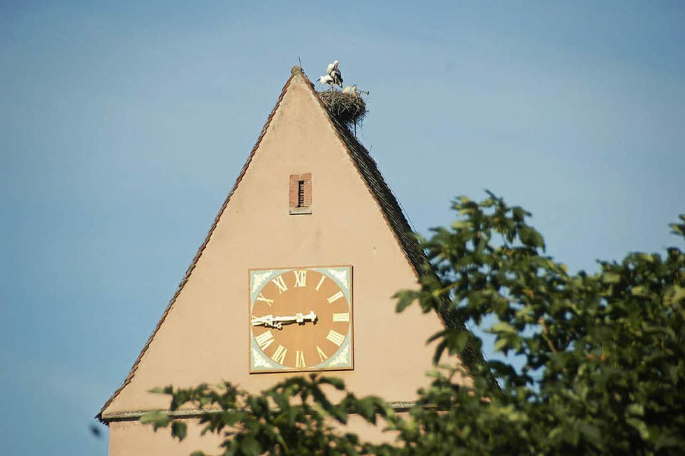 Ev. Kirche Egringen - Efringen-Kirchen