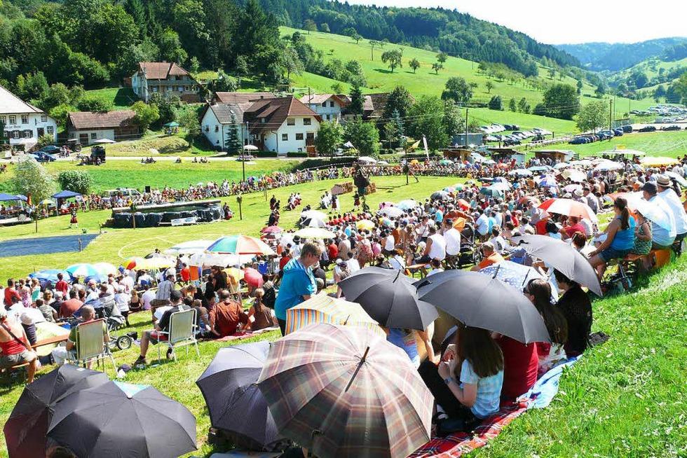 Dorfwiese Prinzbach - Seelbach