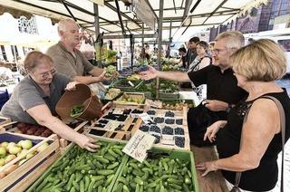 Im August ist der Münstermarkt in fröhliche Farben getaucht