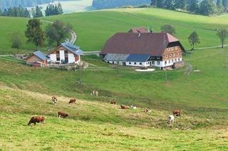 Doldenhof