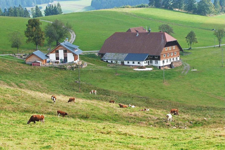 Doldenhof - Breitnau