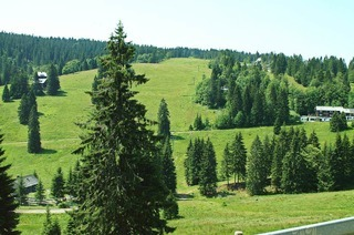 Zeller Hang am Feldberg