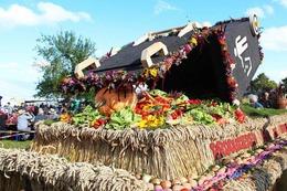 Bilder Kreiserntedankfest in Unadingen