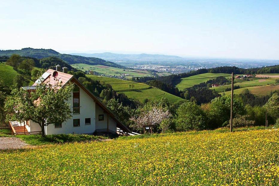 Zimmerthaisenhof - Horben