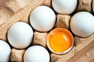 Sonnenhof Hühnerfarm