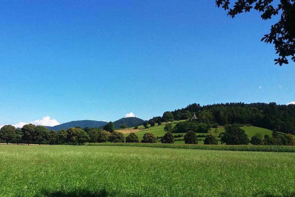 Giersberg - Kirchzarten