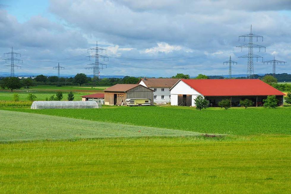 Bauernhof Martin Behringer - Auggen