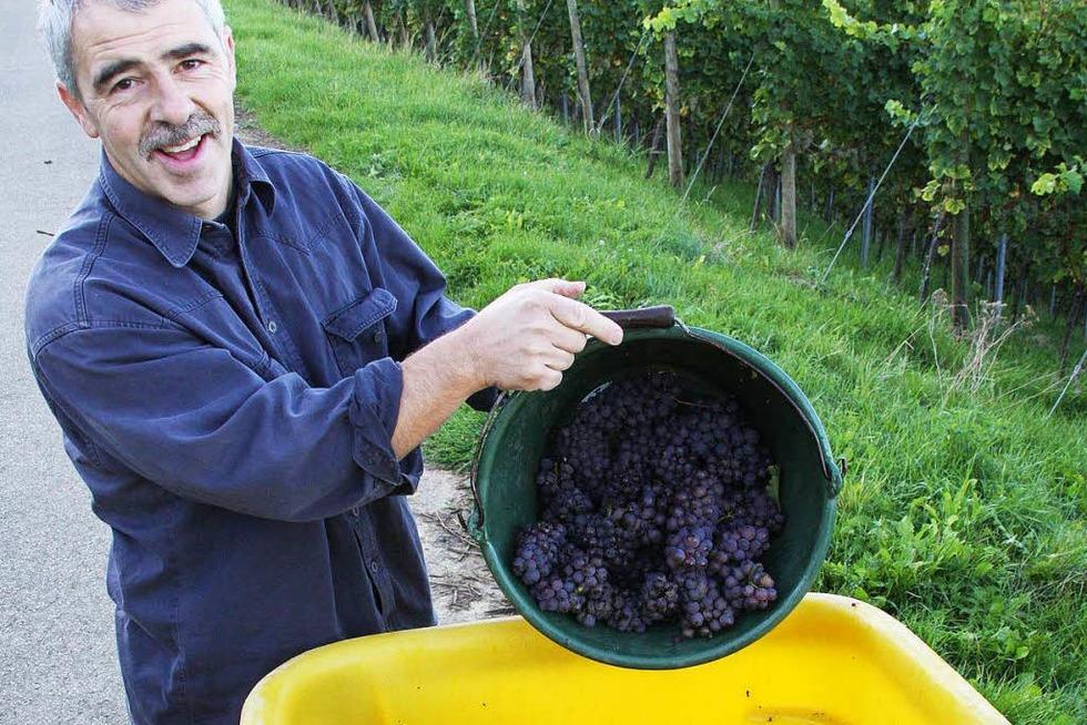 Weingut Hug - Pfaffenweiler
