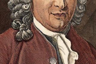 Carl von Linné und sein umstrittenes Frauen- und Rassenbild