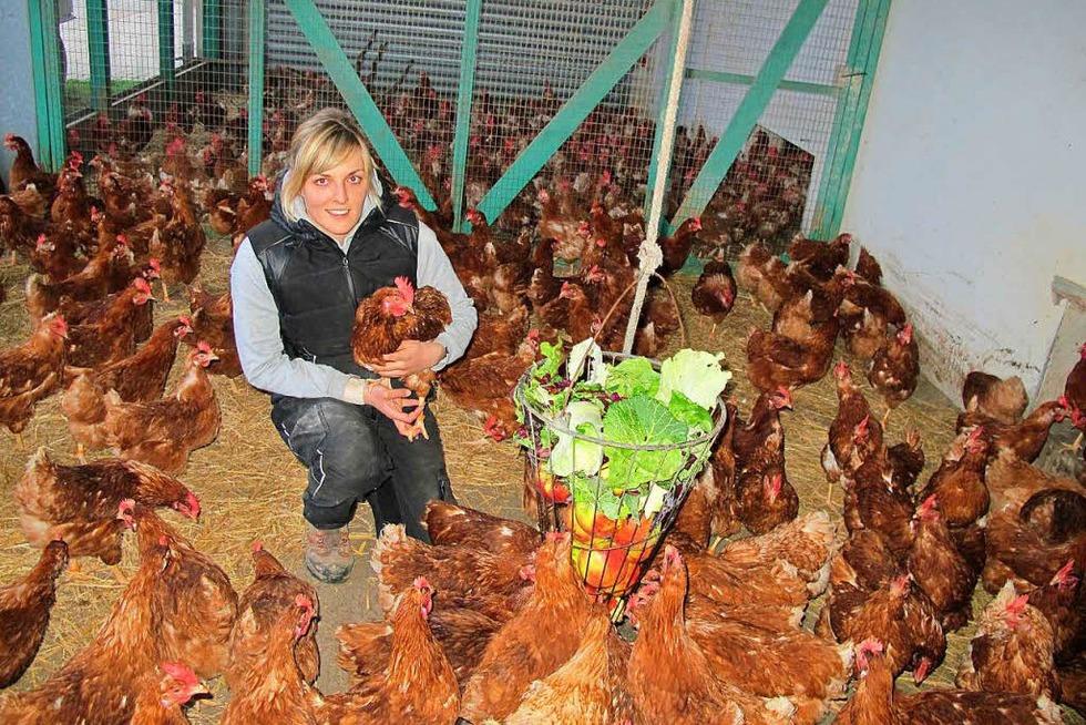 Obst- und Hühnerhof Zink - Renchen