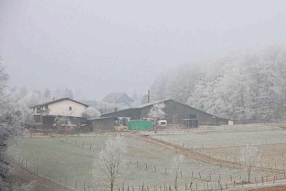 Seppli-Hof (Ober-Eichsel) - Rheinfelden