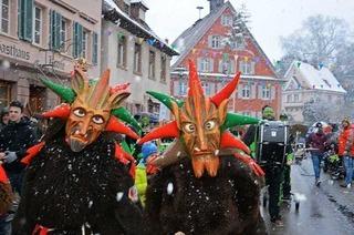 Fotos: Jubiläumsumzug in Malterdingen
