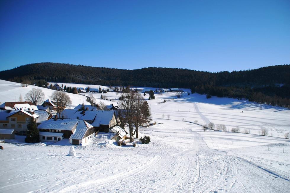 Rodelbahn Herrenschwand - Todtnau