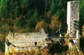 Burgruine Wieladingen (Harpolinger Schloss)