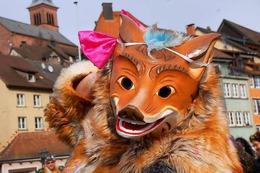 Fotos: Die beiden Laufenburgs feiern beim grenzüberschreitendenen Umzug