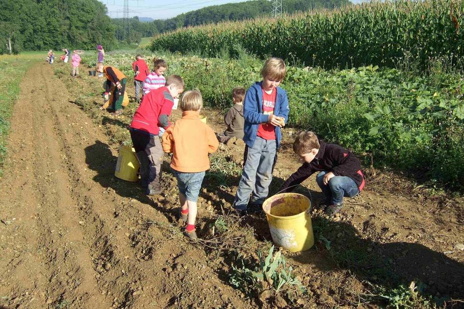 Waldkindergarten im Entegast - Schopfheim
