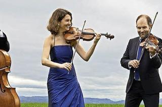 Das Amaryllis-Quartett spielt im Rahmen der Stubenhauskonzerte in Staufen