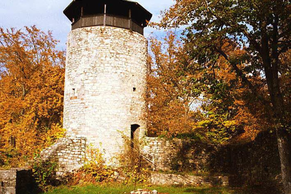 Ruine Wartenberg - Muttenz