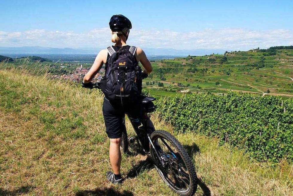 Kaiser-Tour: Mit dem Rad auf halber Höhe um den Kaiserstuhl - Badische Zeitung TICKET