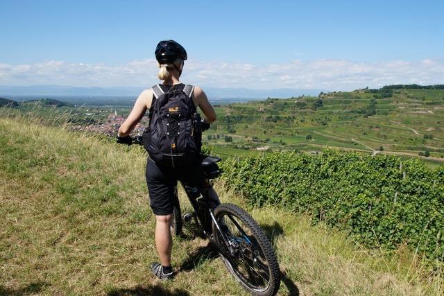 Kaiser-Tour: Mit dem Rad auf halber Höhe um den Kaiserstuhl