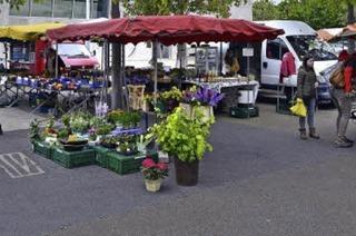 Auf dem Rieselfelder Wochenmarkt machen inzwischen regelmäßig auch Foodtrucks Station