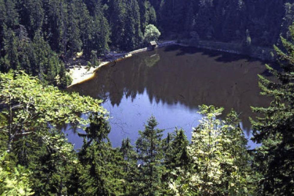 Glaswaldsee - Bad Rippoldsau-Schapbach