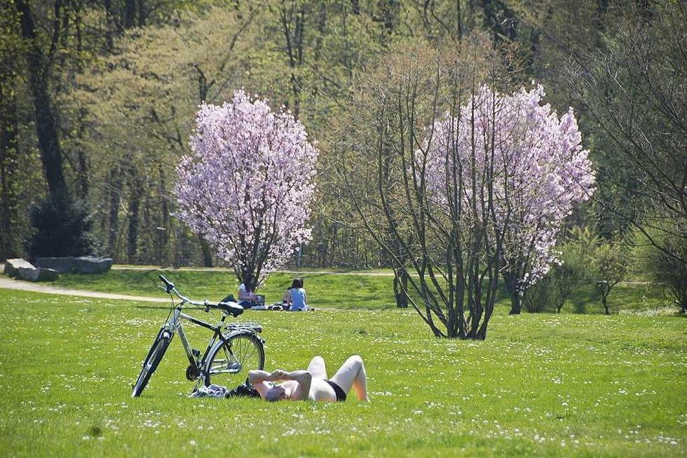 Dreiländergarten - Weil am Rhein