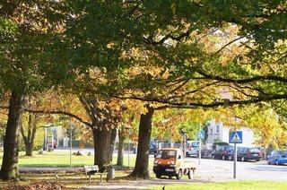 Herbert-King-Park